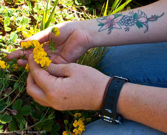 Flowers and tattoo