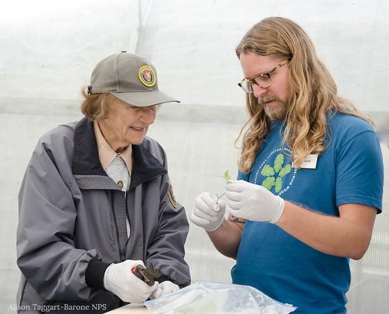 Volunteering at Fort Funston