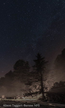 Redwood National and State Park, at night