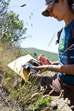 documenting Dias Ridge