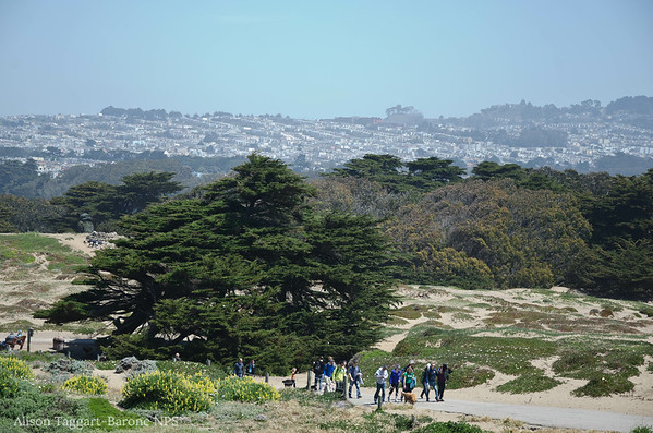 Volunteers headed for lunch, Fort Funston