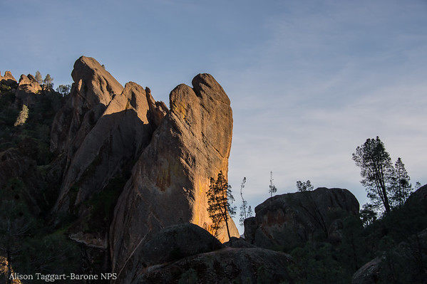 Evening, Pinnacles national Park. Photo by Alison Taggart-Barone NPS