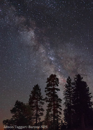 Dar Sky, Sequoia Kings Canyon National Park. Photo by Alison Taggart-Barone NPS