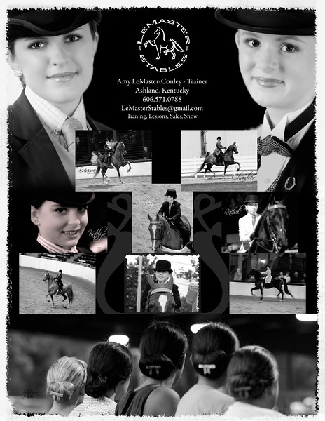 08 Summer Challenge of Champions Advertisement - LeMaster Stables