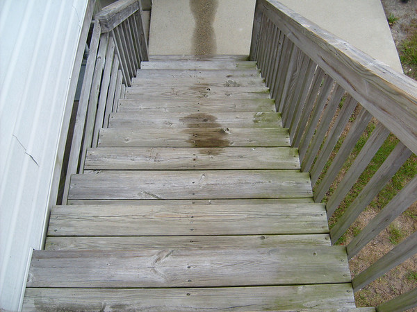rear steps<br /> before