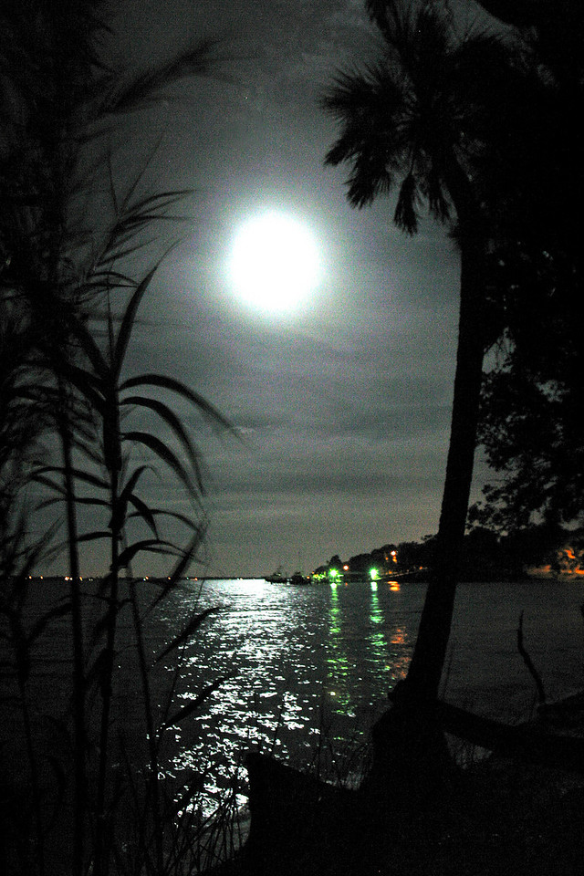 IMG_4057 River Night shot