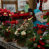 Salvy the Florist   <br /> Steve's Greenhouse  <br /> 181 Broadway  <br /> Lynn, Ma
