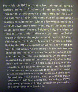 A chronicling of the exile of Jews to Auschwitz/Birkenau including many from the Polish city of Radom, my grandmother-in-law's native town (her siblings were murdered at Aushwitz).