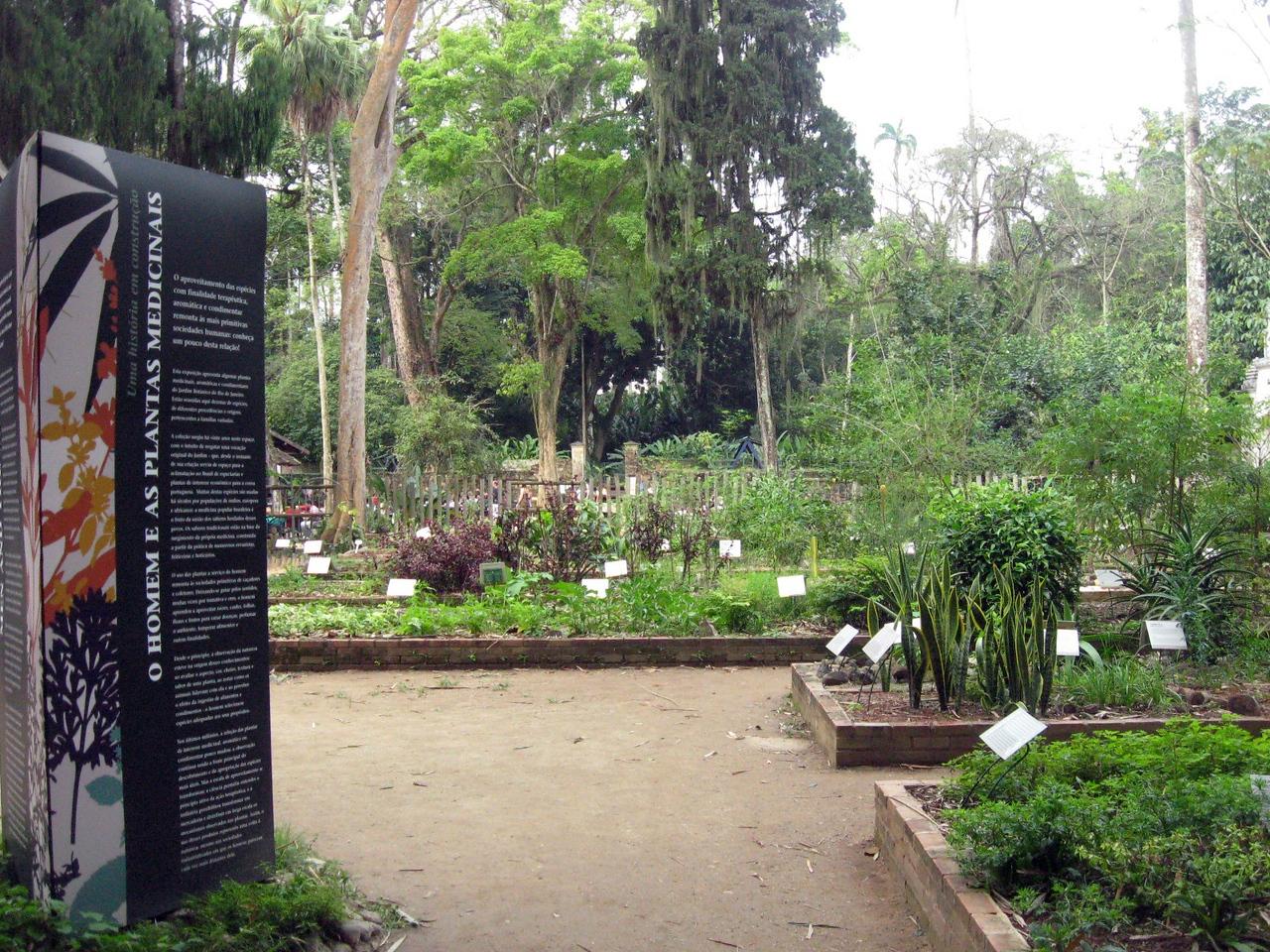Colecao de Plantas Medicinais (Medicinal Plants Collection)