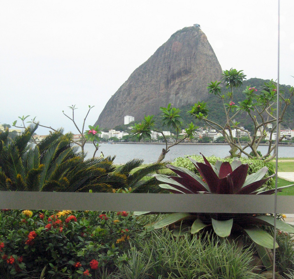 This is--literally--the view from my table:  Sugar Loaf, the bay, Brazilian flora.