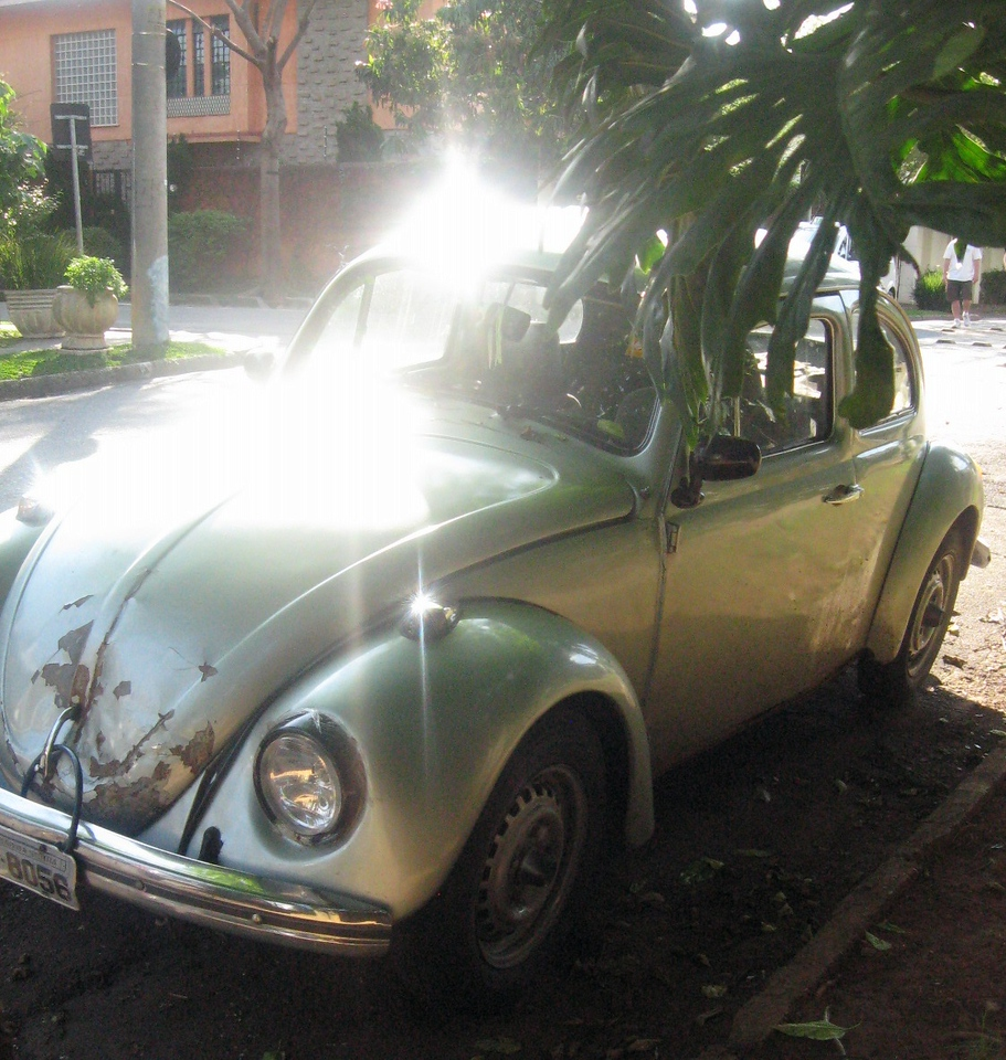 """In the neighborhood--an original VW """"beetle.""""  They were manufactured for years in Mexico and imported to Brazil long after production halted in Germany."""