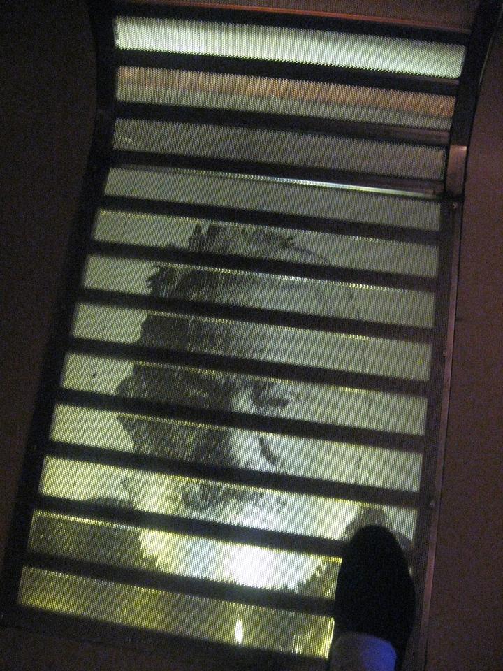 Underfoot, Victor Hugo