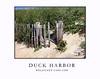 Duck Beach Fence Cape Cod
