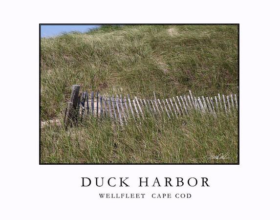 Duck Harbor Cape Cod