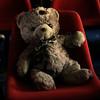 MIA_bear