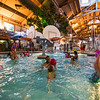 Country_Springs_Waterpark_Kennel-5513