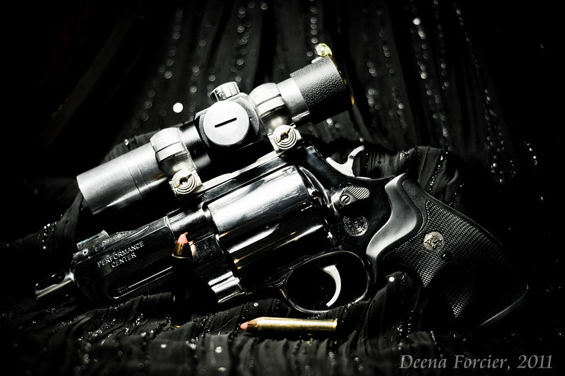 Smith and Wesson .460<br /> This is a beautiful revolver to start with but it does leave a bruise on the hand if not handled correctly. Brett took this and polished it from the brushed steel look to a mirror finish. By customizing the grip a little so that it contours to the hand and helps absorb some of the kick, this gun no longer requires someone over 200lbs to shoot it. The sight addition also helps the overall look of the firearm.