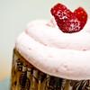 Digi's Cupcakes FINAL-1016