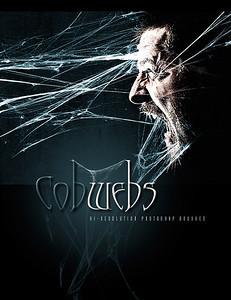 http://www.daz3d.com/rons-cobwebs
