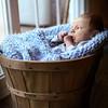 Eli H Newborn 2014 55_edited-1