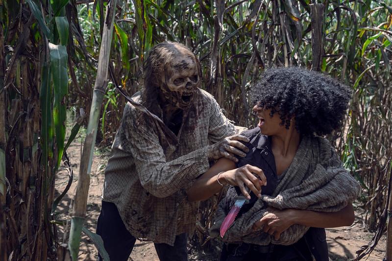Lauren Ridloff as Connie- The Walking Dead _ Season 9, Episode 11 - Photo Credit: Gene Page/AMC