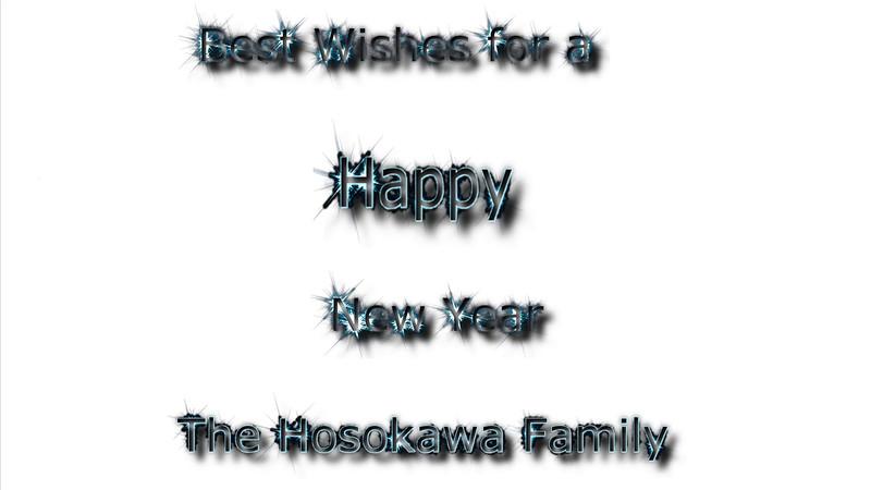 Happy Holiday 2014 from The Hosokawas