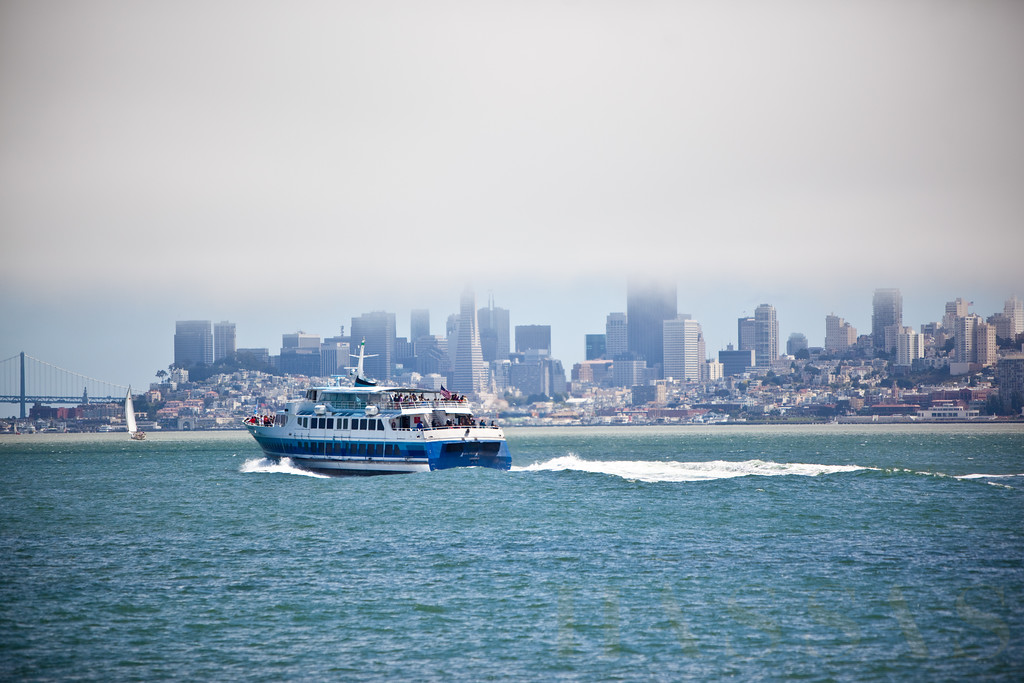 GG Ferry 40th-1169