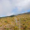 The pig fence on the border of the Haleakala National Park.