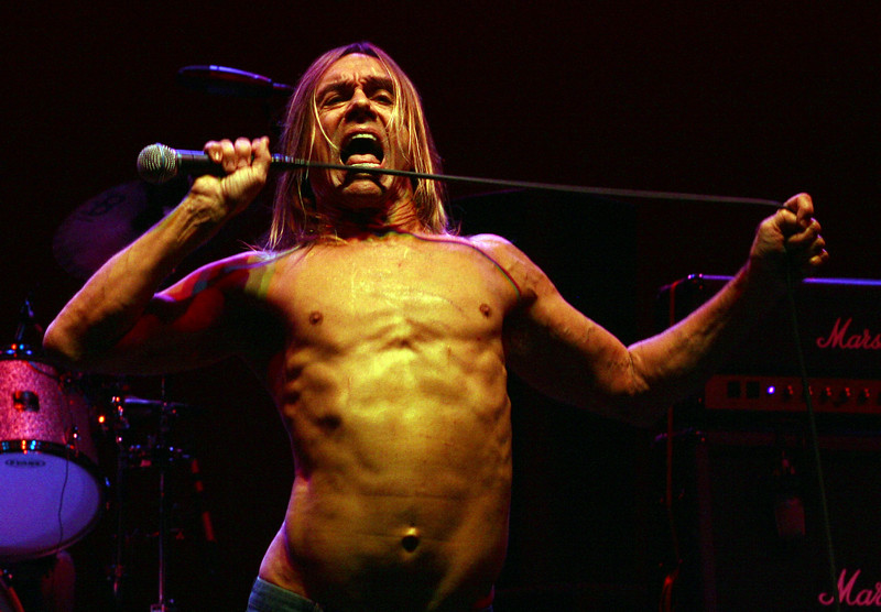 Iggy and The Stooges perform live at The Wiltern Theater, April 23, 2007, in Los Angeles, California. (Photo by Katy Winn/Corbis)