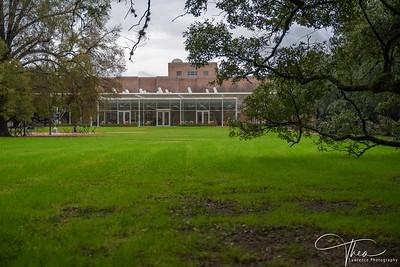 Rice University -Brochstein Pavilion