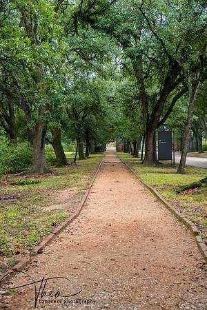 Rice University - Campus Entrace