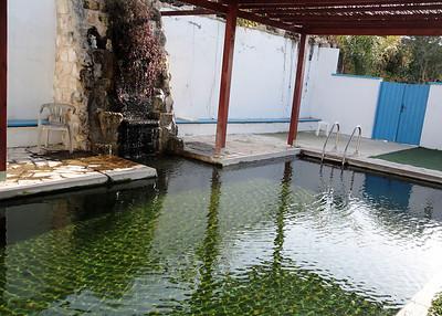 An eco-pool!