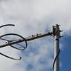 K284AL antenna - top bay