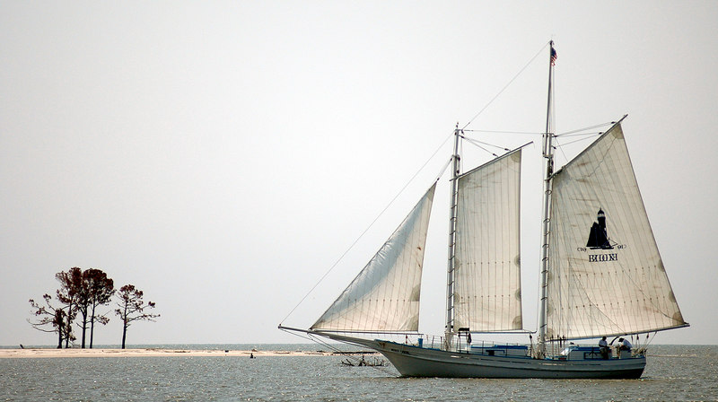 One of the sailbaots in the City of Biloxi Regatta sail past Deer Island off east Biloxi beach in Biloxi Thursday. The ships made the trip from the back bay, past the Biloxi lighthouse, before mooring at Point Cadet.