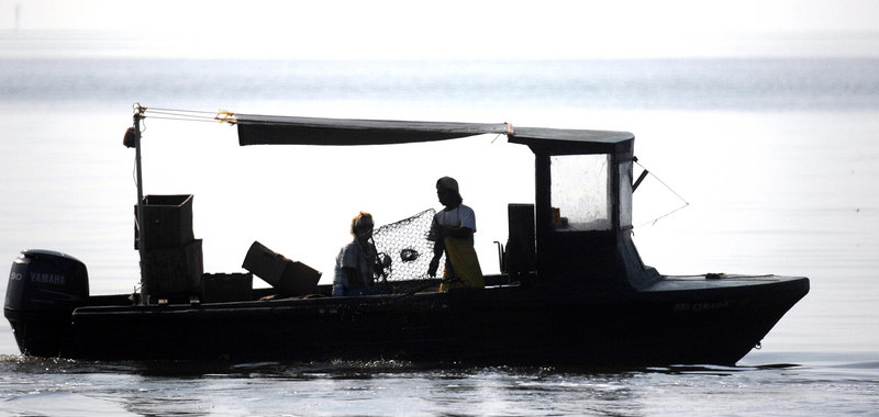 Fishermen pull in traps into their boat as the move along the shore off Pascagoula. The fishing industry is slowly returning to normal along the Gulf after the devistation of Hurricane Katrina.