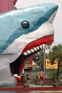 Ignoring the wind and rain from the feeder bands from Hurricane Katrina, a jogger runs uunder the open sharks mouth of a surf shop along the beach in Biloxi Sunday.