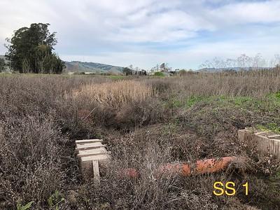 Southern Sonoma 1