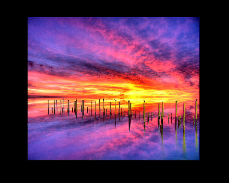 my favorite composite photo, birds on pilings, and a mirror image of the sky and sea. probably 3 days work to create