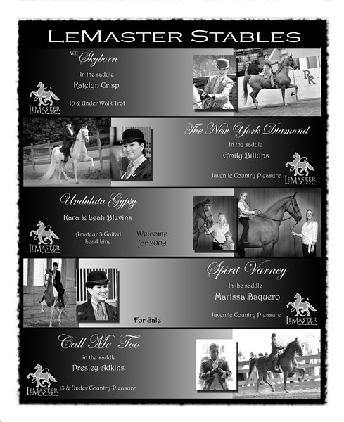 LeMaster Stables Bluegrass Horseman Ad May 2009