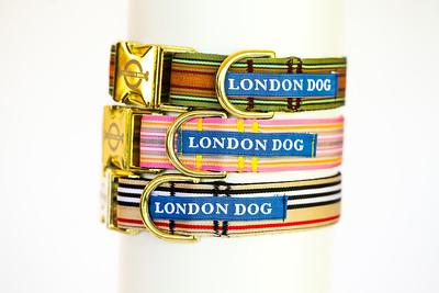 London Dog-12