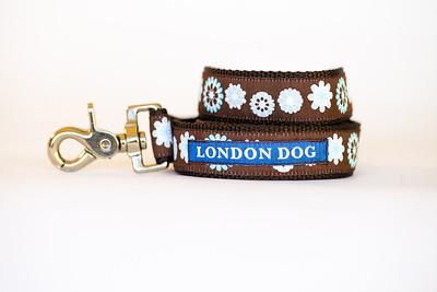 London Dog-20