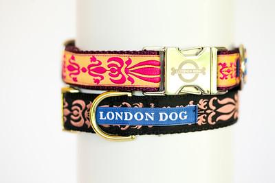 London Dog-10