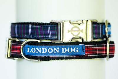 London Dog-2