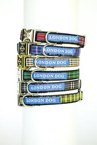 London Dog-6