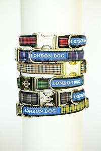 London Dog-7