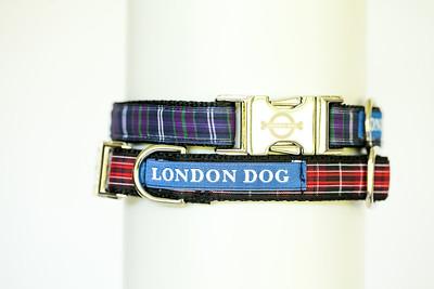London Dog-3