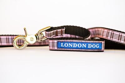 London Dog-17