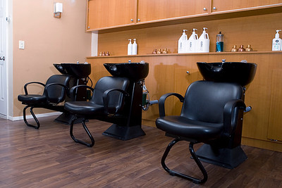 Salon pic_002