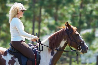 20130914_Horses_018