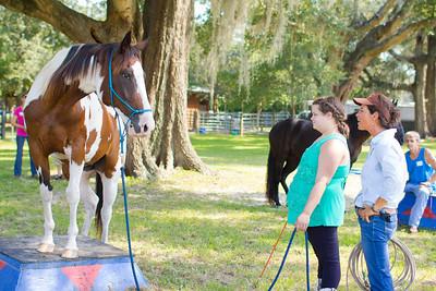 20130914_Horses_012